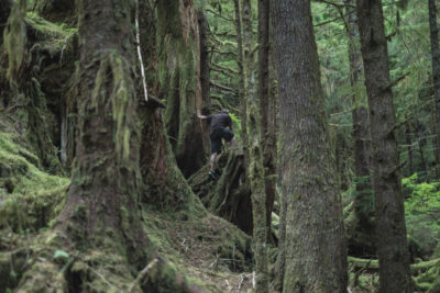 Exploring the forest in Echo Harbour on the East Coast of Moresby Island, Haida Gwaii